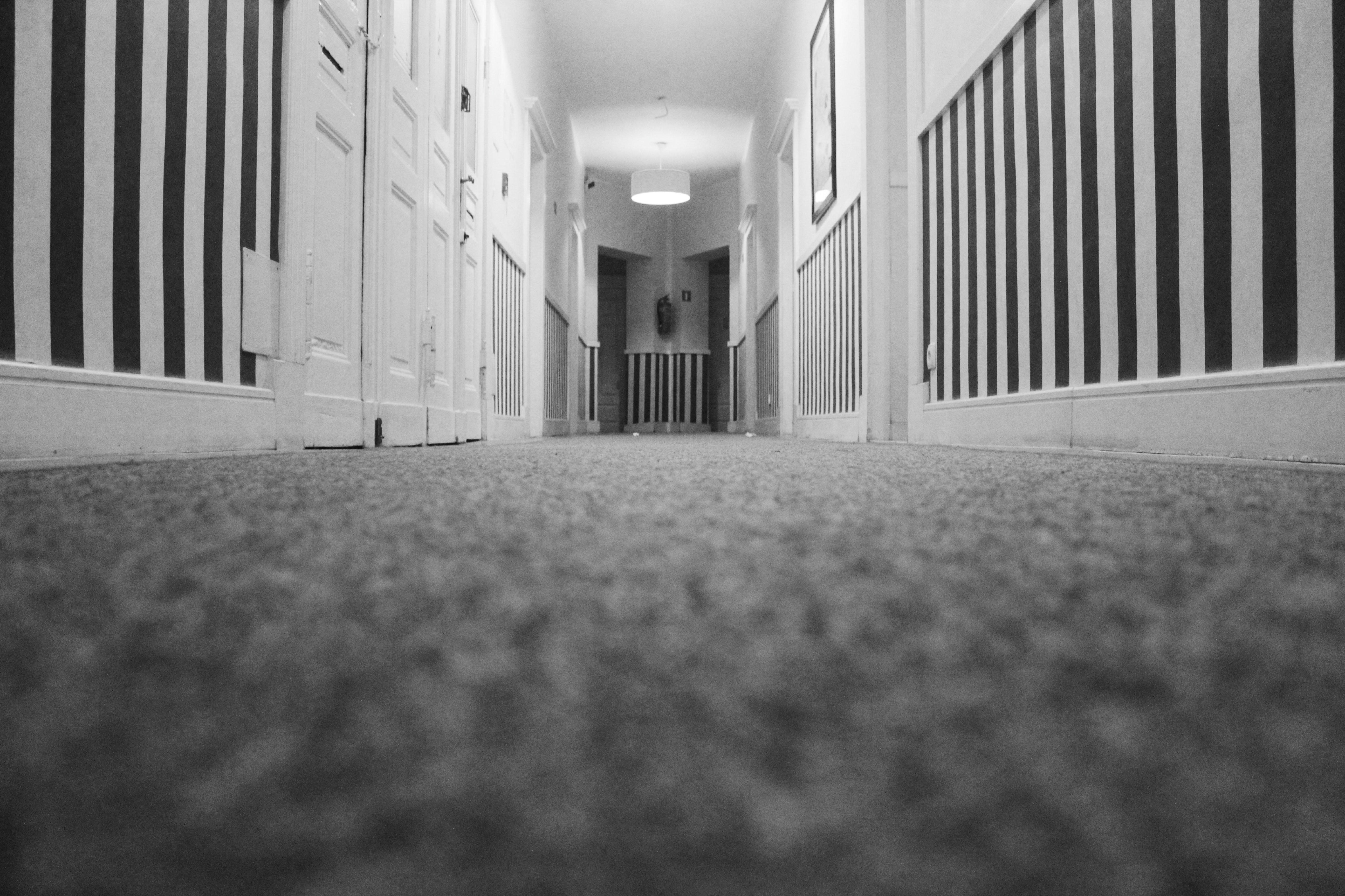 4 Reasons To Choose Carpet Edmonton Carpenting